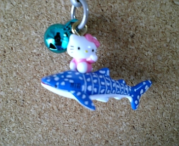 大阪 海遊館ジンベイザメ